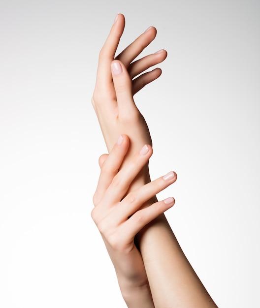 건강한 깨끗한 피부를 가진 아름다운 우아한 여성 손의 사진 무료 사진