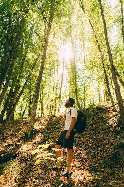 森のよそ見、晴れた日のハイカー男の写真。旅行は良い考えです。 Premium写真