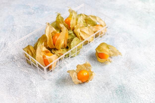 Физалис перуанский или золотая ягода. Бесплатные Фотографии