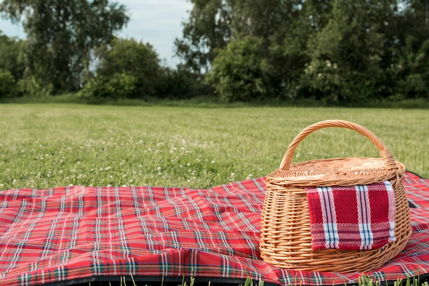 ピクニックバスケットと公園の芝生の上の毛布 Premium写真