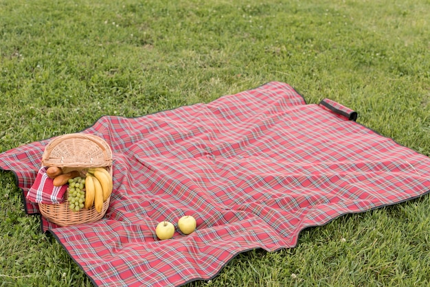 Picnic basket and blanket on park grass Free Photo