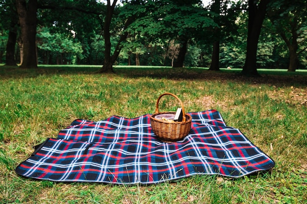 Picnic basket on checkered blanket over the green grass in the park Free Photo
