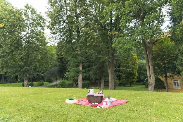 Picnic basket on the grass field Free Photo