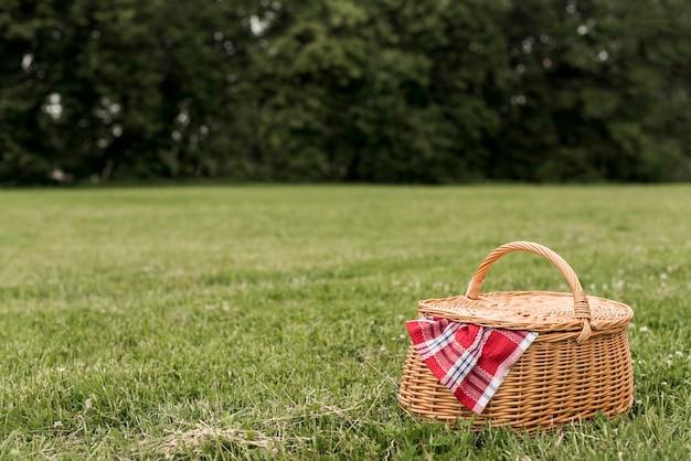 公園の芝生の上のピクニックバスケット Premium写真