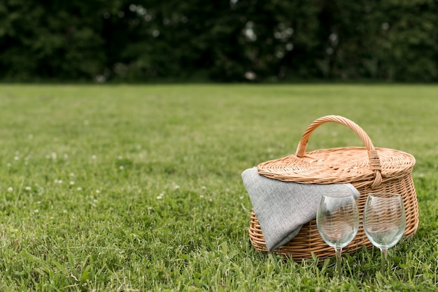 Picnic basket on park grass Free Photo