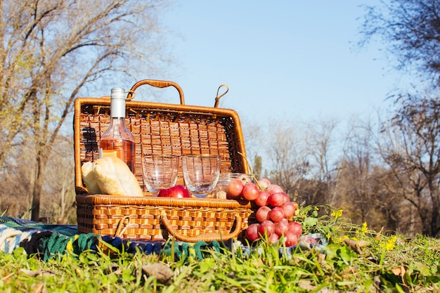 Picnic basket with bottle of wine and grapes Free Photo