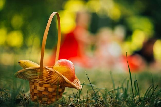 Picnic basket with defocused background Free Photo