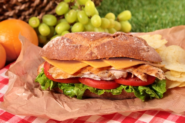 Picnic basket with delicious chicken baguette sandwich Free Photo
