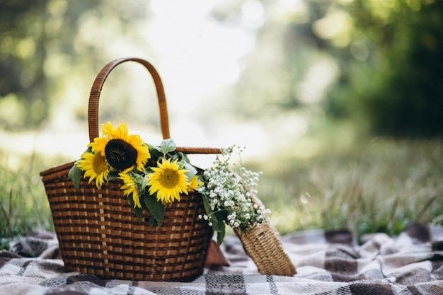 Picnic basket with fruit and flowers on blanket Free Photo