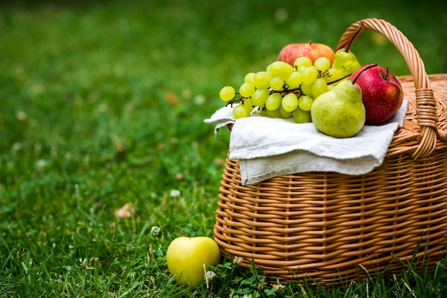 Picnic basket with fruit on it Free Photo