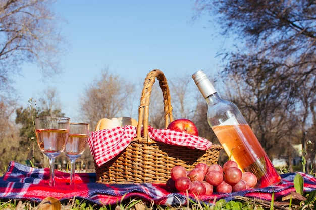 Picnic basket with two glasses of white wine Free Photo