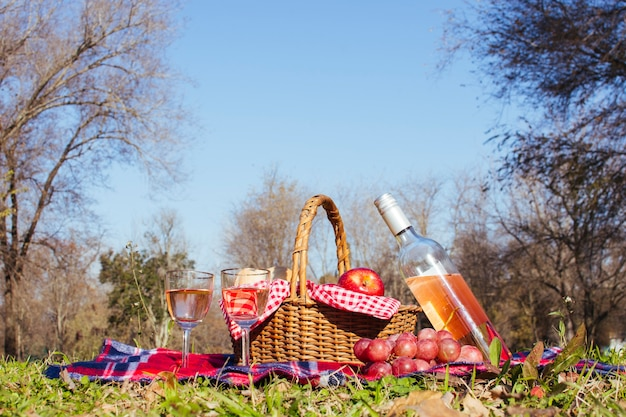 Picnic basket with two glasses of wine Free Photo