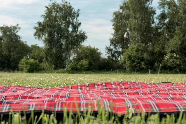 公園の芝生の上のピクニック毛布 Premium写真