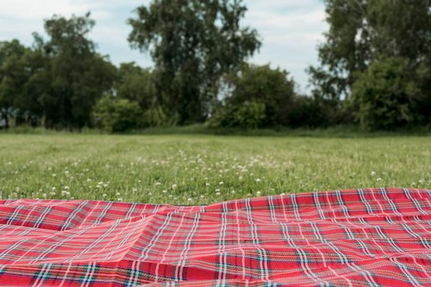 Picnic blanket on park grass Premium Photo