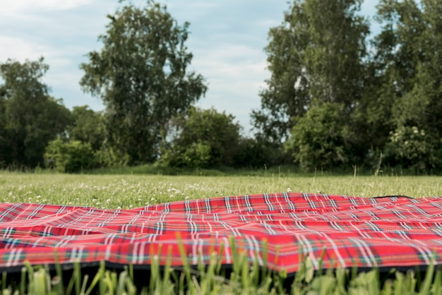 Picnic blanket on park grass Free Photo