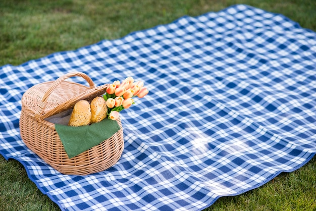 Picnic blanket with a basket on grass Free Photo