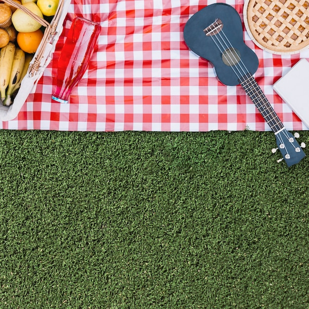 Picnic composition with copyspace Free Photo