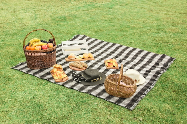 Picnic setting on meadow Free Photo