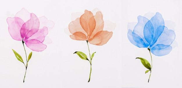 Picture water colour, hand draw, flowers pink, orange, blue. Premium Photo