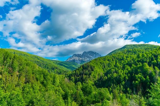 絵のように美しいコモビ山脈はモンテネグロの東にあります。 Premium写真