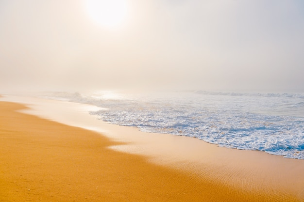 Picturesque scenic seascape with misty beach. Premium Photo
