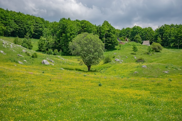 The picturesque village is among the meadows on the high mountains. Premium Photo