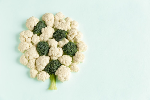 Pieces raw of broccoli and cauliflower in form of tree flat lay Premium Photo