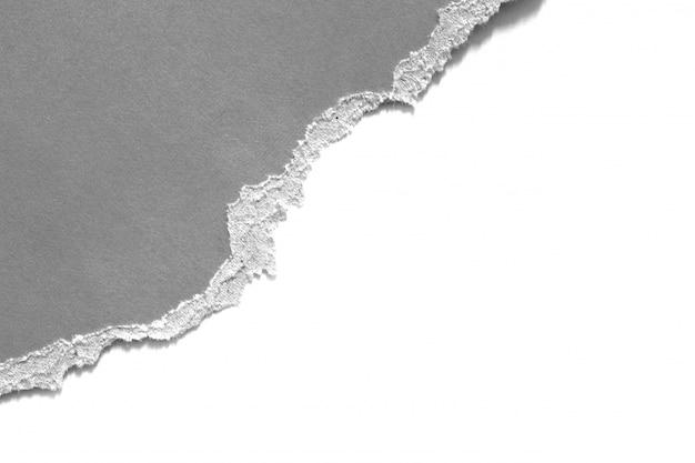Pieces of torn paper texture Premium Photo