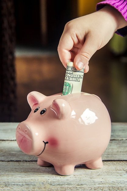 Piggy bank and dollars. selective focus. Premium Photo