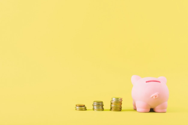 Piggy bank with columns of coins Free Photo