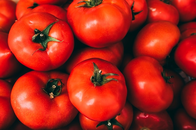 Pile of delicious tomatoes Free Photo