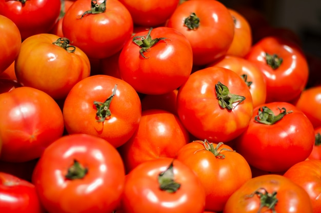 Pile of fresh and delicious tomatoes Free Photo