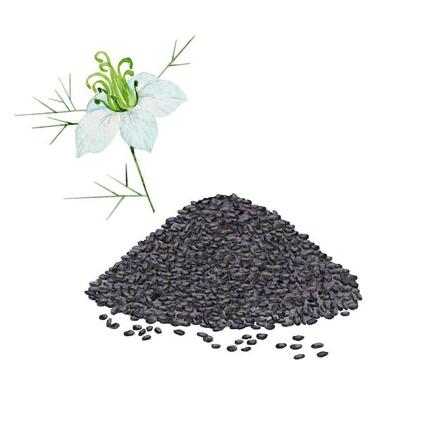 黒い種子とクミンの花の山 Premium写真