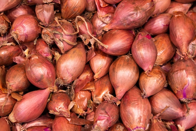 Pile of red organic onions in husk, may be used for background Premium Photo