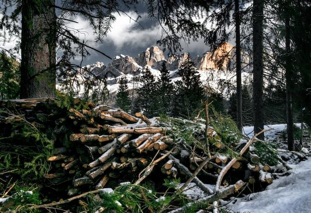 Catasta di alberi in legno in un bosco innevato circondato da scogliere delle dolomiti Foto Gratuite