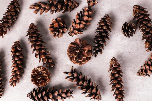 Pine cones background Free Photo