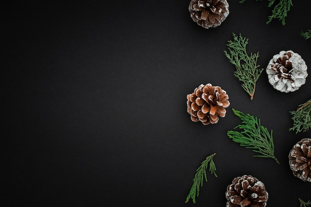 Pine cones and branches on dark background Free Photo
