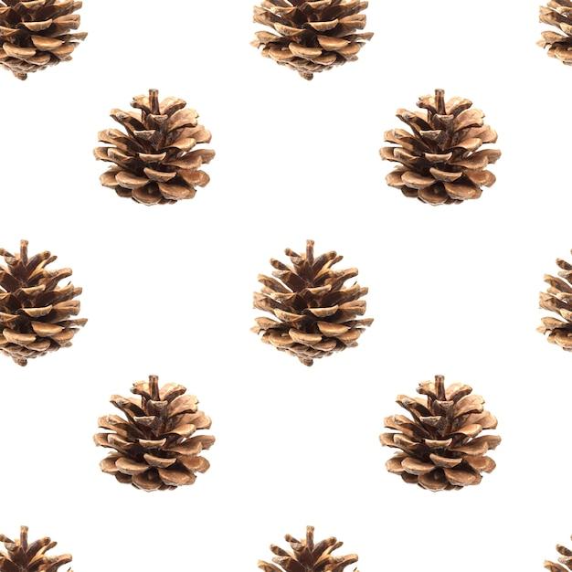 Pine cones seamless pattern isolated on white Premium Photo