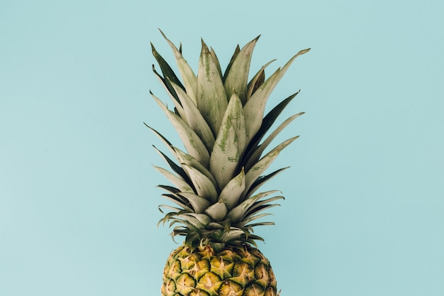 Pineapple on blue background Free Photo