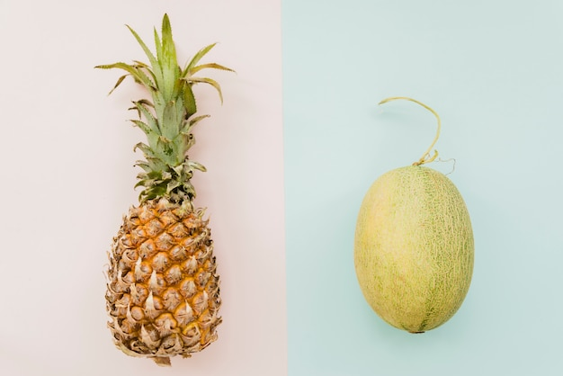 Pineapple and melon on multicolored background Free Photo