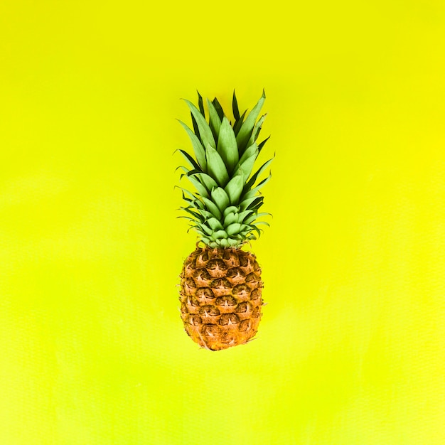Pineapple with green leaves Free Photo