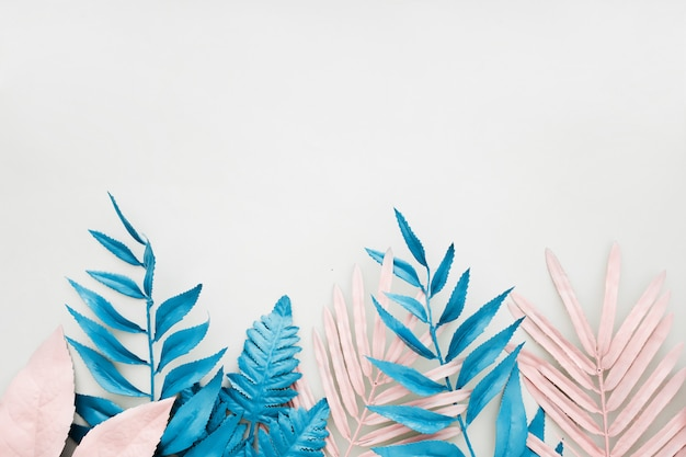 흰색 배경에 활기찬 대담한 색상의 분홍색과 파란색 열 대 야자수 잎. 무료 사진