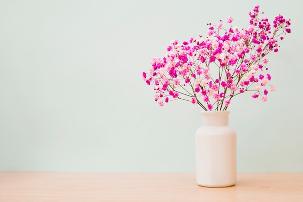 Pink baby's-breath flowers in white bottle on wooden desk against colored background Free Photo
