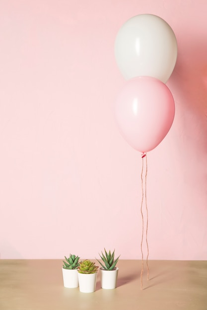 Pink balloons and cactus Free Photo