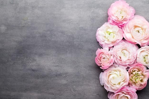 Розовый красивый лютик на сером фоне Premium Фотографии