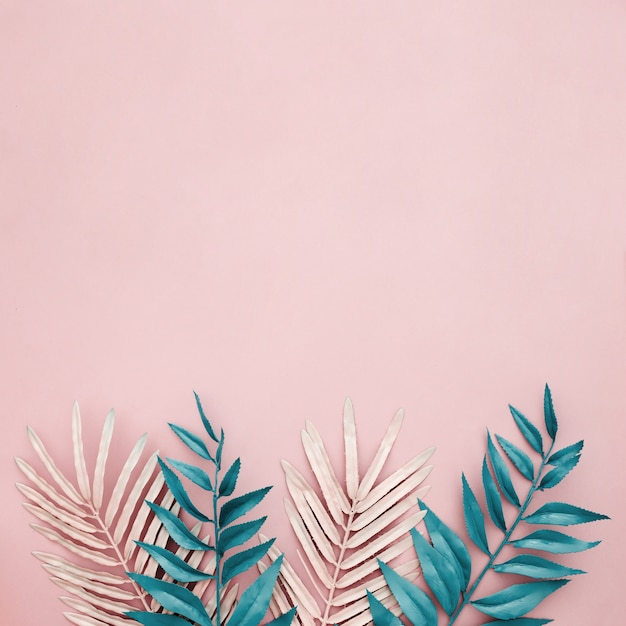 Pink and blue leaves on pink background with copyspace on top side Free Photo