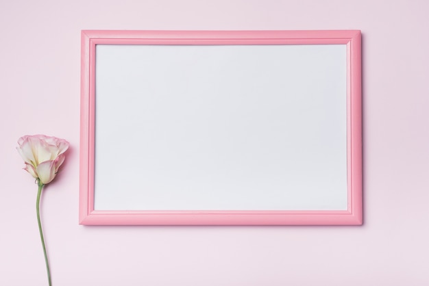 Pink border white picture frame with eustoma flower against background Free Photo