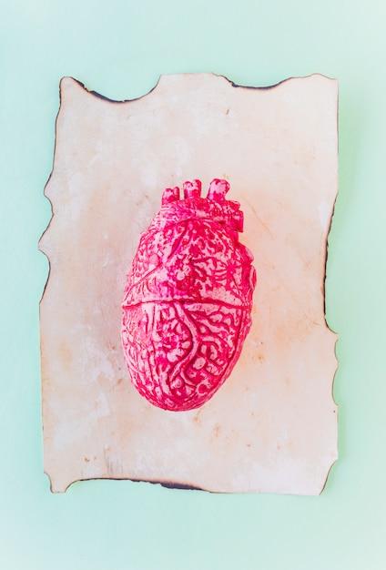 Rosa cuore umano in ceramica su carta vecchia Foto Gratuite
