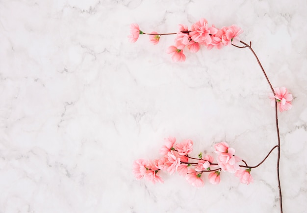 Pink cherry blossom over the marble textured background Free Photo