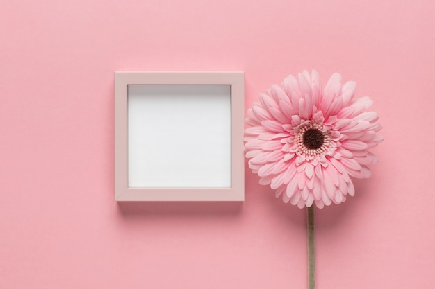 Pink flower with little frame Free Photo